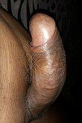 Genova Transex Lana Xxl 328 25 61 364 foto hot 7