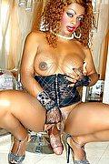 Pisa Trans Escort Naomy Stella 329 25 14 253 foto hot 3