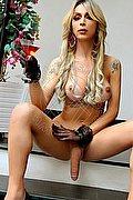 Bologna Transex Kim Gaucha 351 56 19 561 foto hot 2